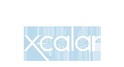 Xcala 虚拟数据仓库